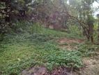 Land for Sale in Ampitiya