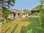 Paddy Field Facing Single Story House For Sale In Korathota